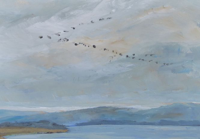 Arrivals (Pink-Footed Geese)