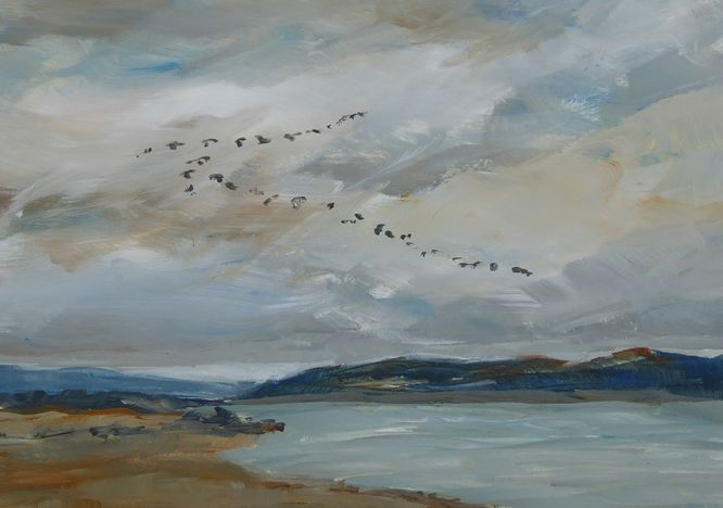 Winter Visitors (Pink-Footed Geese)