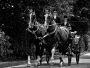 HC Coach and Horses by Stephen Mallender