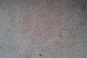 Photo of carpet before cleaning.