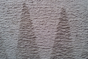 Photo of carpet after cleaning.