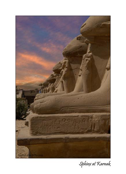 Sphinx at Karnak