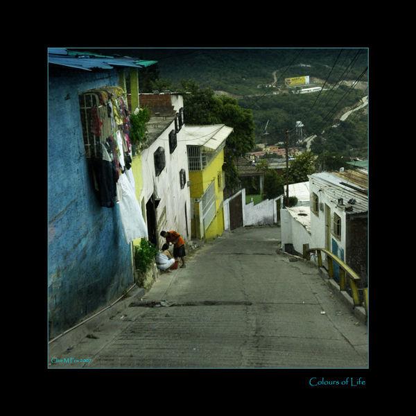 Bario Life Venezuela
