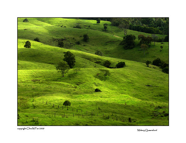 Green Fields in Maleny Queensland