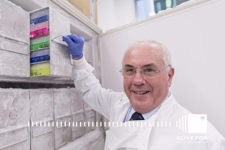 Cancer Scientist at Work