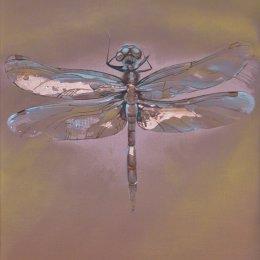 Wings of Copper
