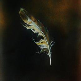 Of Bird
