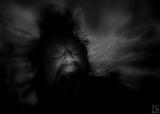 ARACHNOPHOBE NIGHTMARE