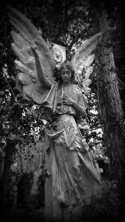 ANGEL {II} - 2009