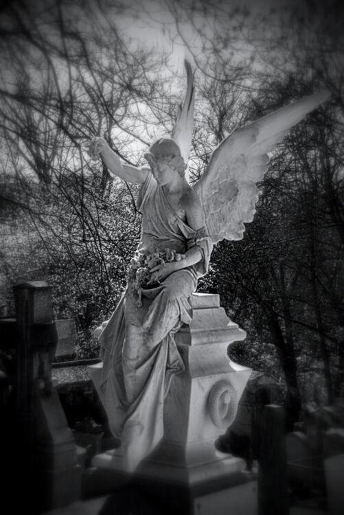 ANGEL {IV}