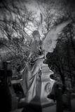 ANGEL {IV} - 2012