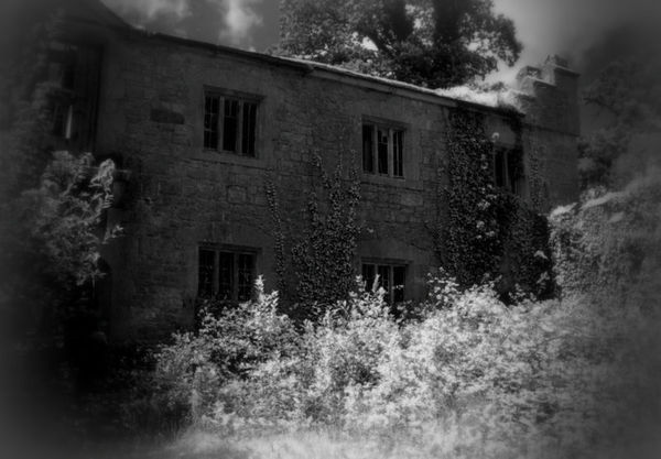 RUINED STABLES {ll} - 2011