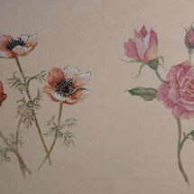 """Anemones and Roses"" by Judith Jaggard"