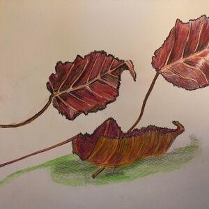 """Fallen Autumn Leaves"" by Jan Callender"
