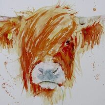 """""""Heiland coo fromGask Road, Kelty"""" by Moira MacPherson"""