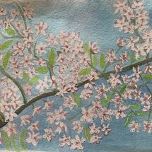 """""""Cherry tree in blossom"""" by Jan Callender"""