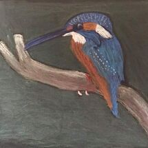 """Kingfisher"" by Hazel Campbell"