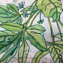 """""""Fatsia Leaves"""" by Maggie Brown"""