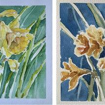 """""""Daffodils"""" by Moira MacPherson"""