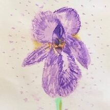 """Iris"" by Hazel Campbell"