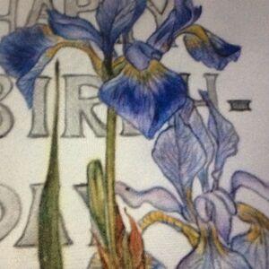 """""""Iris Sibirica"""" by Peggy Thomas"""