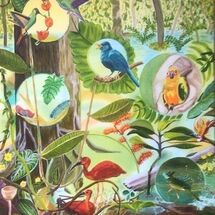 """""""Beauties of the Rainforest"""" by Gabi Piche Paterson"""