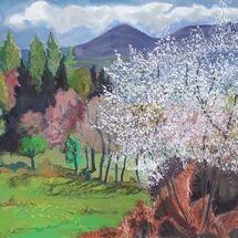 """Blackthorn Blossom (Sloe)"" by Margaret Cummins"