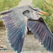 """Grey Heron over Otterston Loch"" by Jan Callender"