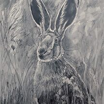 """Sunshine Hare"" by Margaret Cummins"