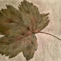 """'Autumn Leaf"""" by Gwynith Young"""