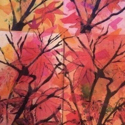 """Acer in my Garden x4!"" by Maggie Brown"