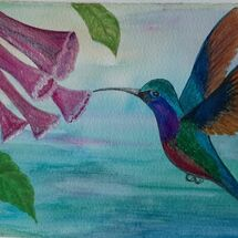 """A Humming Bird"" by Judith Jaggard"