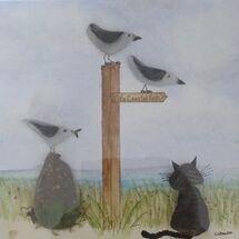 """Coastal cat"""