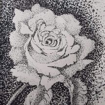 """A Single Rose' by Judy Jaggard"