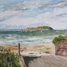 Craigleith Island North Berwick