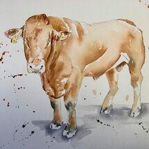 """Netherton Farm Bull"" by Moira MacPherson"