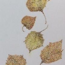 NOVEMBER - Pointillism