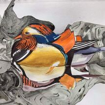 """Mandarin Duck"" by Maggie Brown"