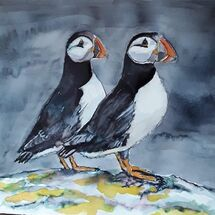 """Puffins, May Island"" by Margaret Cummins"