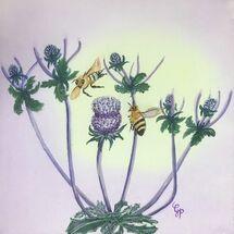 """""""Interest in my Scottish Garden Thistle"""" by Gabi Piche-Paterson"""