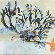 """Coastal Life with Orange Starfish"" by Gabi Piche-Paterson"