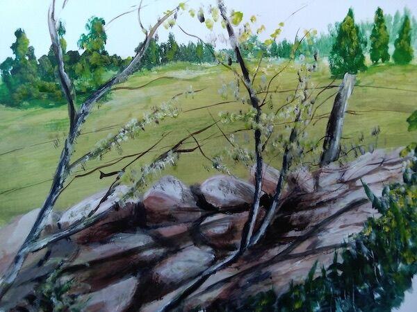 """Drystane Dyke and Blossom"" by Dorothy Turvey"