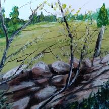 """Drystane Dyke and Blossom"" by Dorothy Turvey"
