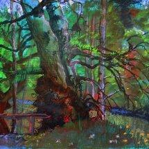 Perthshire Oak