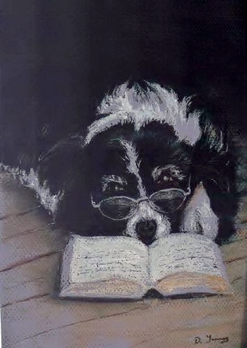Quiet please - I'm reading