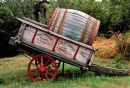 Old wine cart, Tuscany vinyard, Italy.