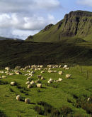Trotternish Ridge, Isle of Skye, Scotland.