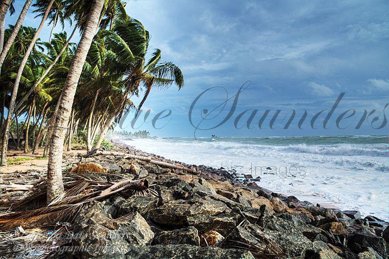 Sri Lankan shoreline