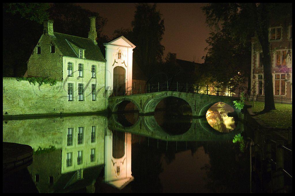 Bruges night time reflection (1)