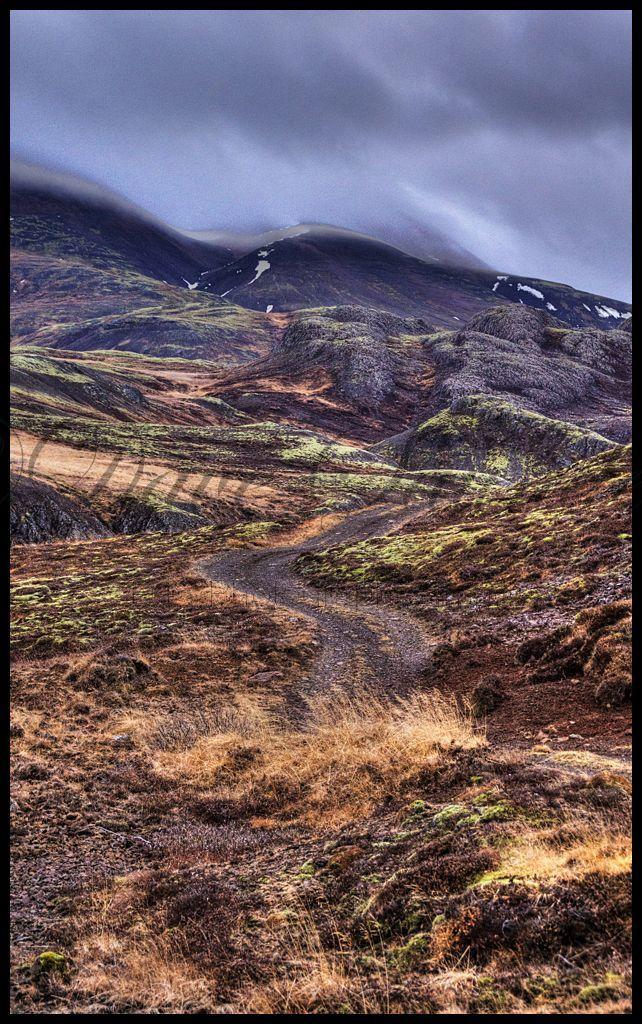 Wilderness pathway